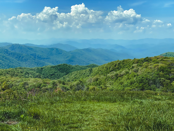 Views along Appalachian Trail Max Patch Mountain Summit with blue mountains and green trees