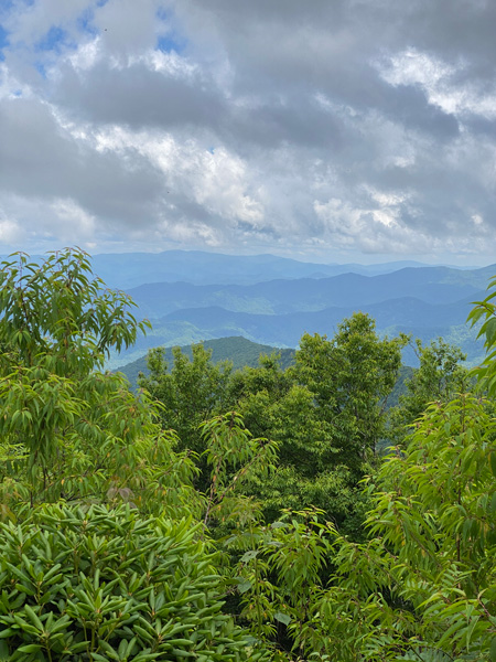 Craggy Flats At Craggy Garden Hike with picture of green trees overlooking Blue Ridge Mountains with cloudy and stormy sky