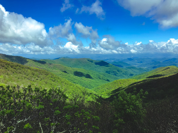 Craggy Gardens Trail Blue Ridge Parkway North Carolina with blue and green Blue Ridge Mountains
