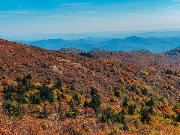 Asheville Fall Colors Blue Ridge Parkway with red, yellow, and orange leaves with blue mountain ridges