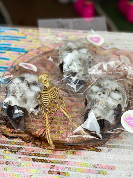 Asheville fall festivals VeganFest with picture of gluten-free and vegan skull cakes