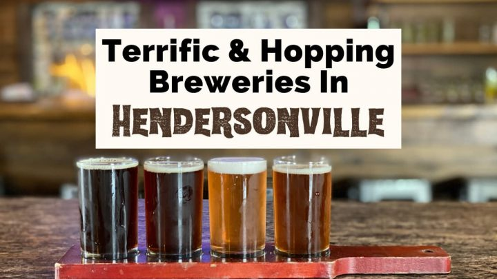 Best Breweries In Hendersonville NC with flight of beer with bar in background from Triskelion Brewing