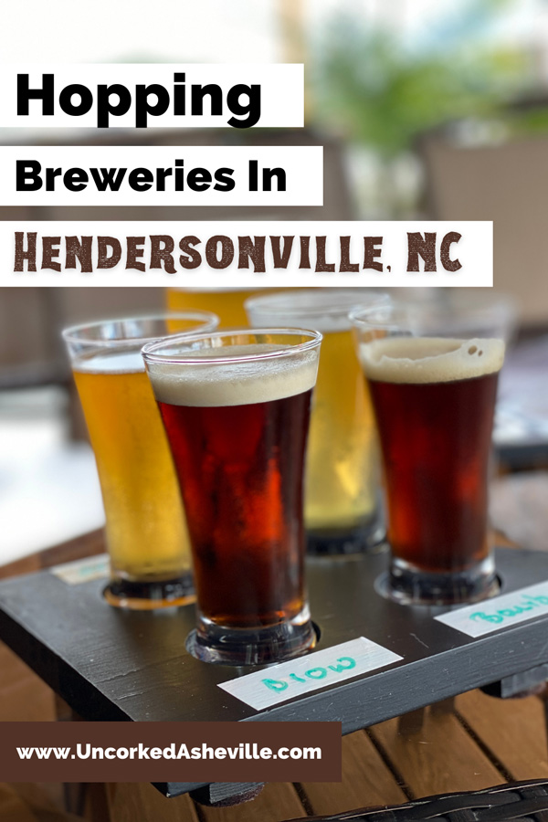 Best Hendersonville Breweries Pinterest pin with flight on light and dark beers from Guidon Brewing Company