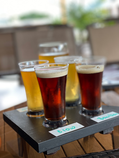 Flight Hendersonville Beer Guidon Brewing Company with guidon shaped flight board and two dark beers and two light beers