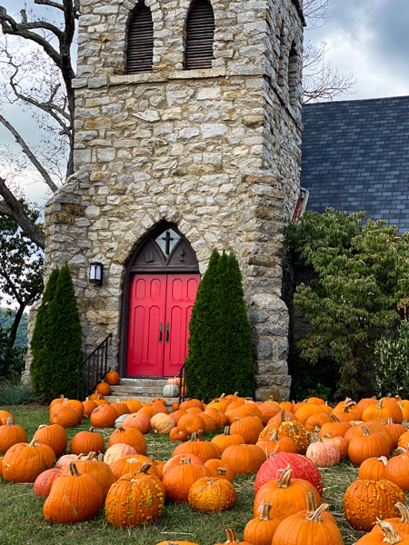 Grace Episcopal Church Asheville Pumpkin Picking with orange pumpkins on a hill outside a gothic looking church with red door