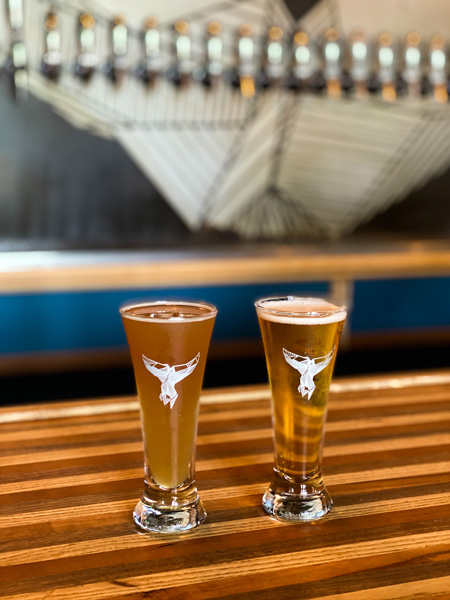 The Whale West Asheville NC with two small pours of light colored beer on bar in front of beer taps with whale logo