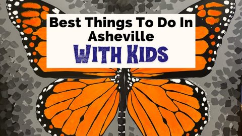 Best Things To Do In Asheville with kids with mural of orange and black monarch butterfly from Asheville museum of science